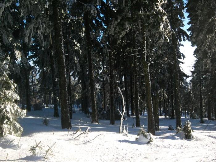 hochficht_feb_2011_005